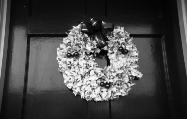 white holly wreath