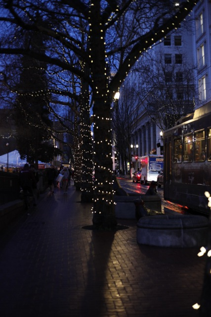 Christmas in Portland 2012-2