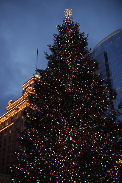 Christmas in Portland 2012-6