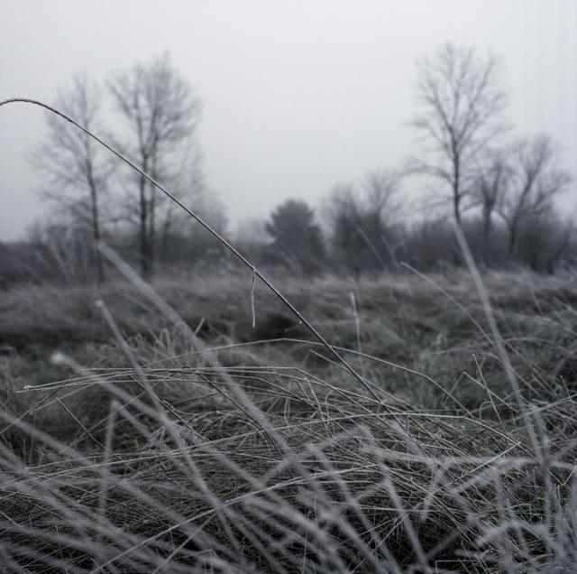 frozen_fog-3