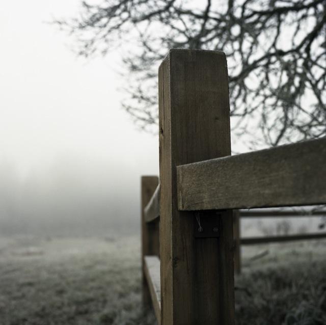 frozen_fog-4