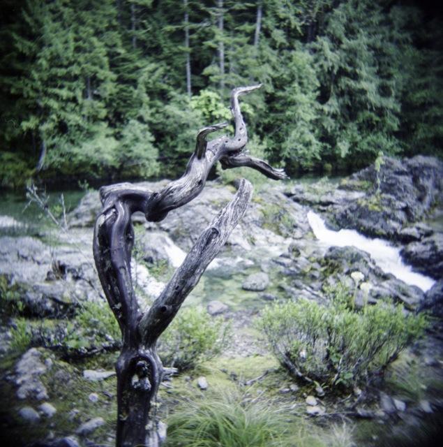 OpalCreek_Holga708