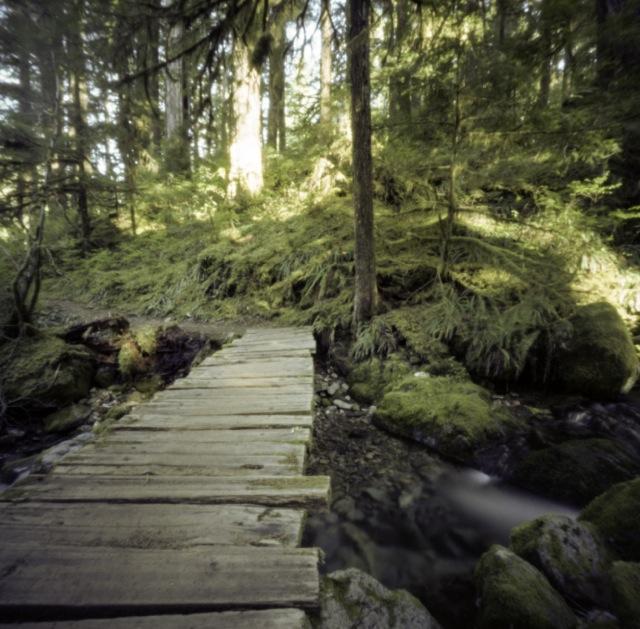 several foot bridges