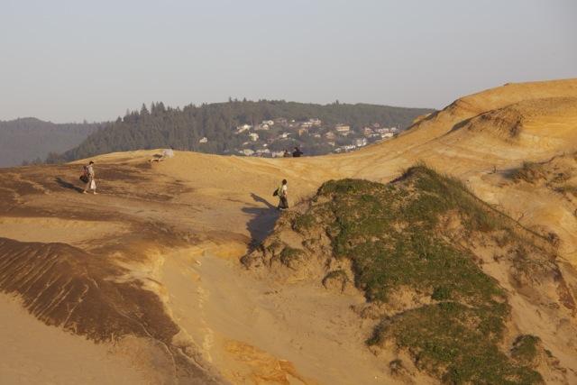 Cape Kiwanda-4