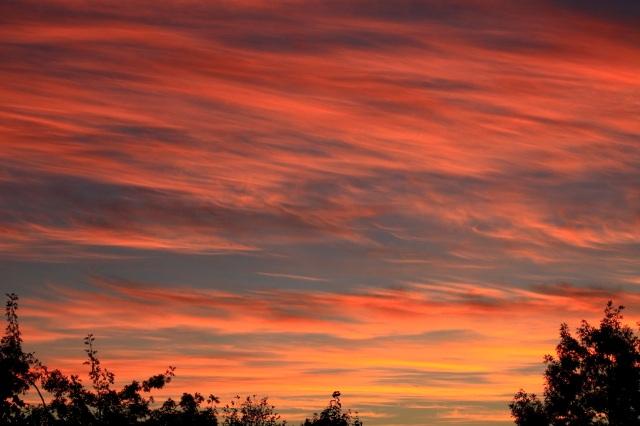 clouds bring beautiful sunrises