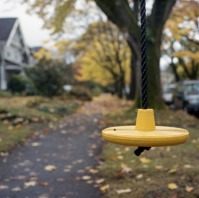 yellow swing and leaves in Ladd's Addition