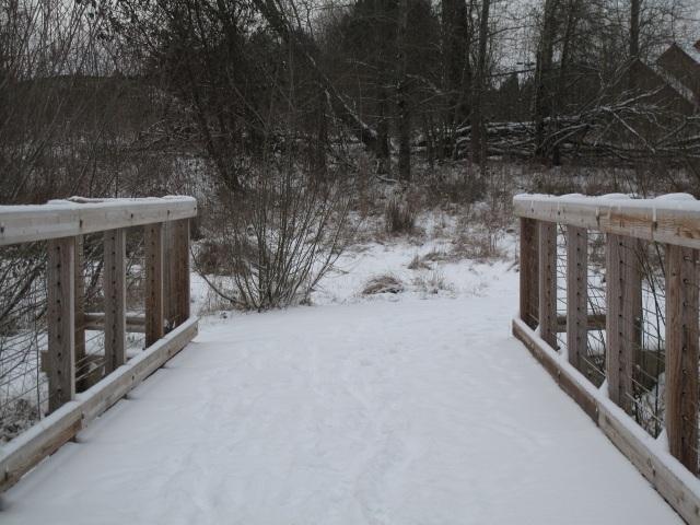 snow 2-7-2014-11