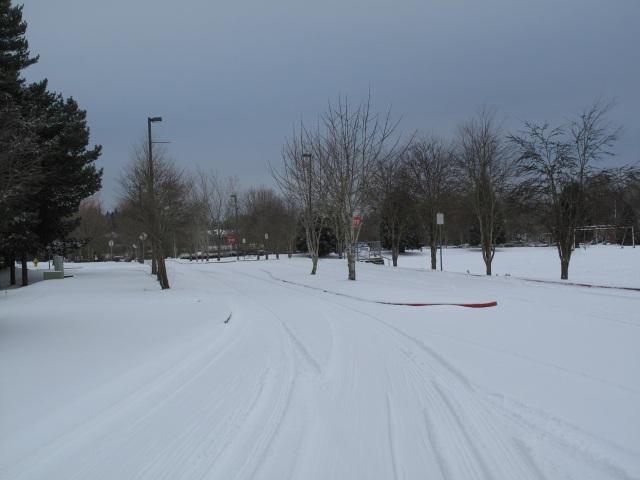 snow 2-7-2014-24