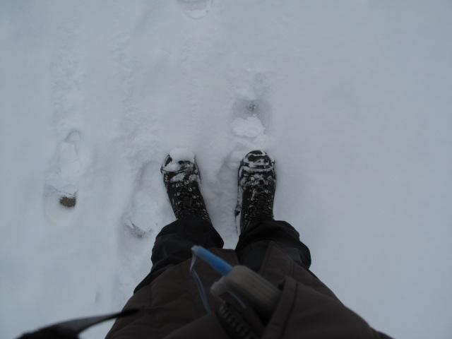snow 2-7-2014-5