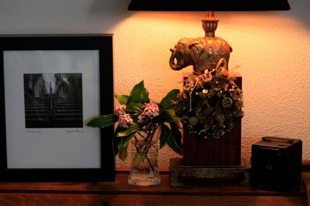 Zeb's Edinburgh steps, flowers and a lamp