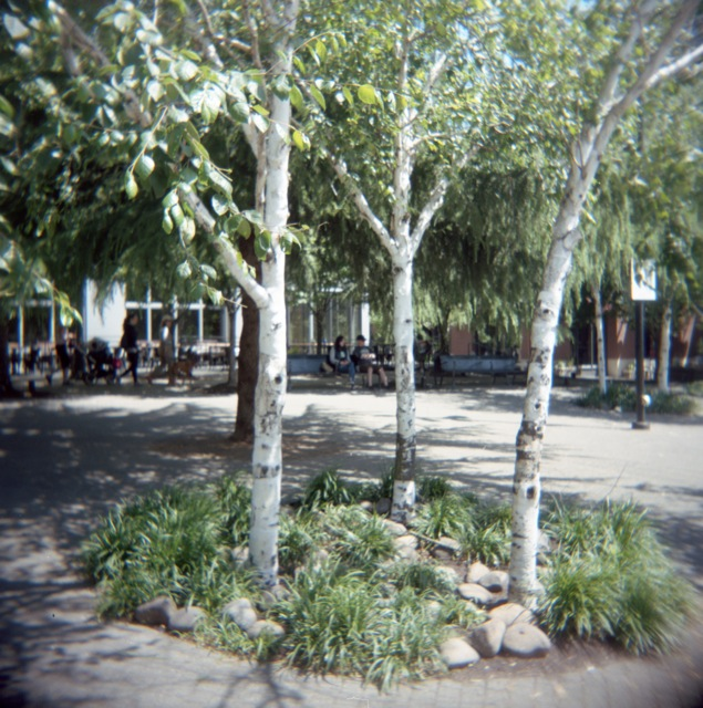 Jamison Square