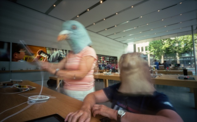 animals_pinhole278