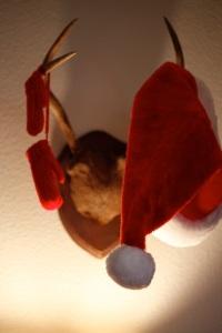 Christmas 2014-29