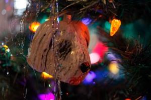 Christmas 2014-3