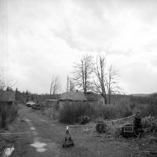 backroads_Oregon_Hassie358