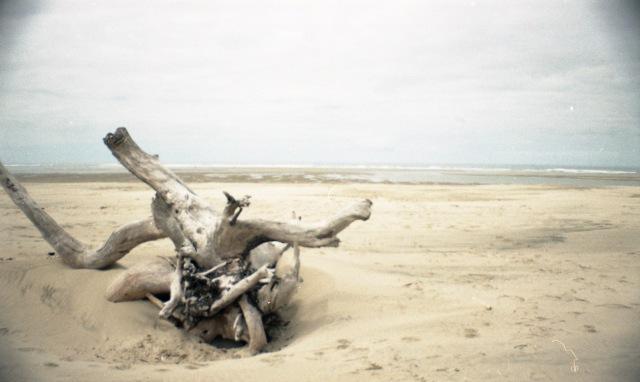 beach_LaSardinaPortra905