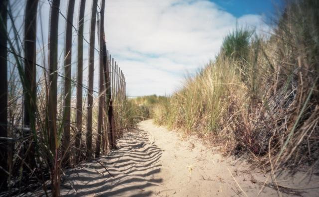 beach_pinhole962