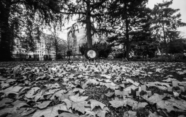 London_pinhole-8