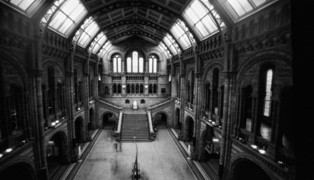 London_pinhole