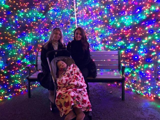 at Zoo Lights